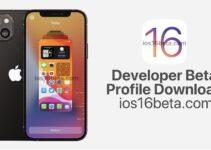 iOS 16 Developer Beta Profile Download